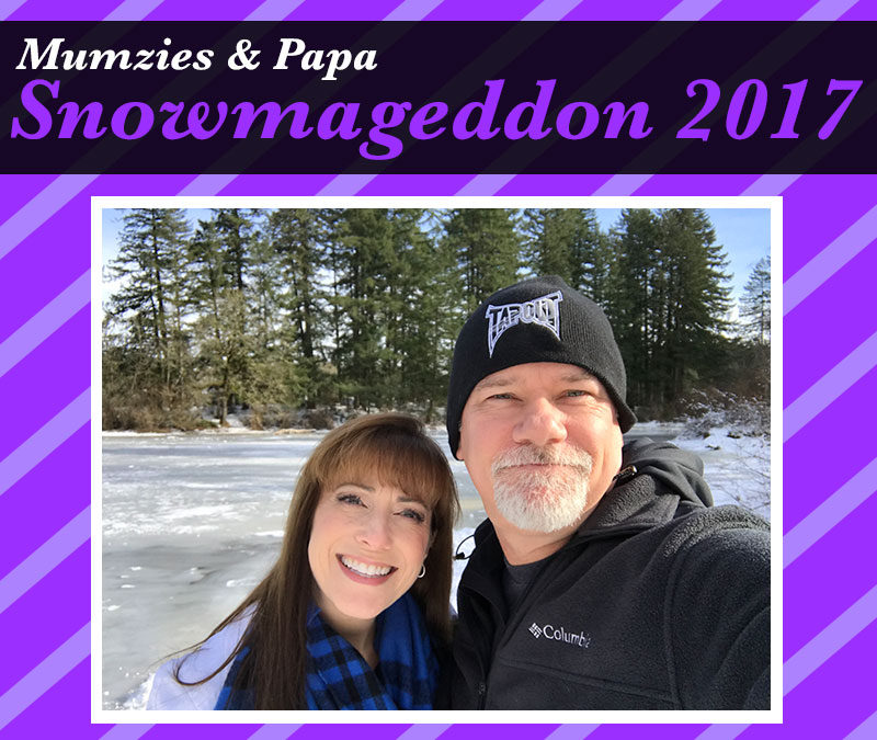 Snowmageddon 2017