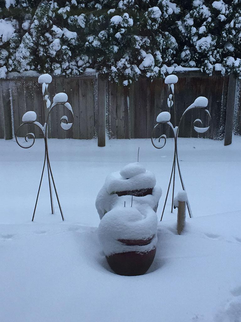 Snowy Backyard Planters