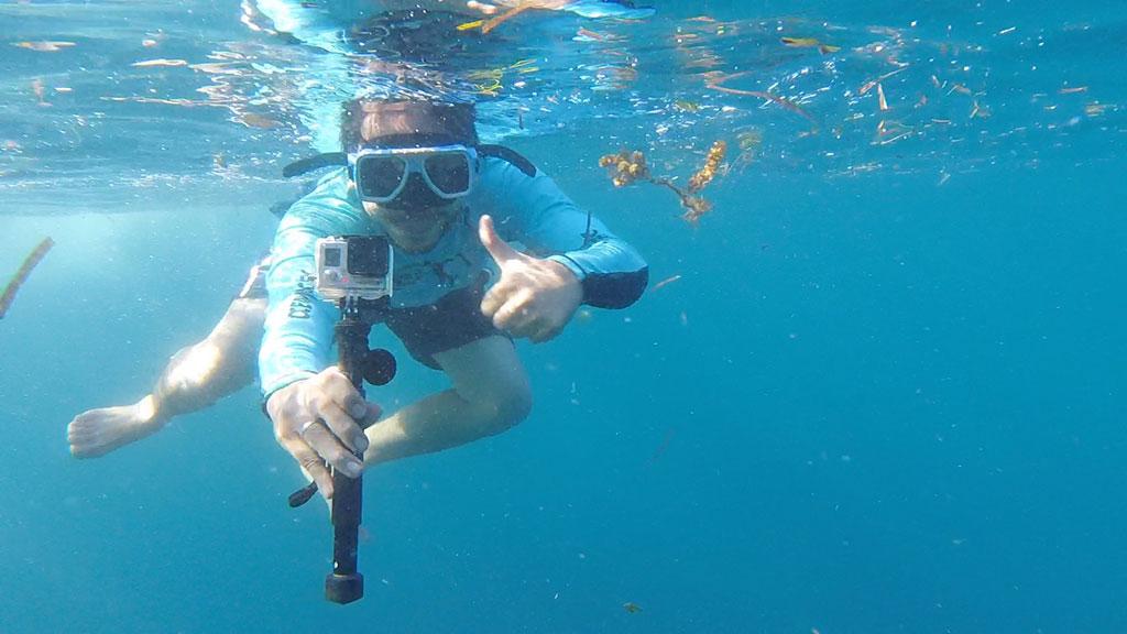 Harold Snorkeling
