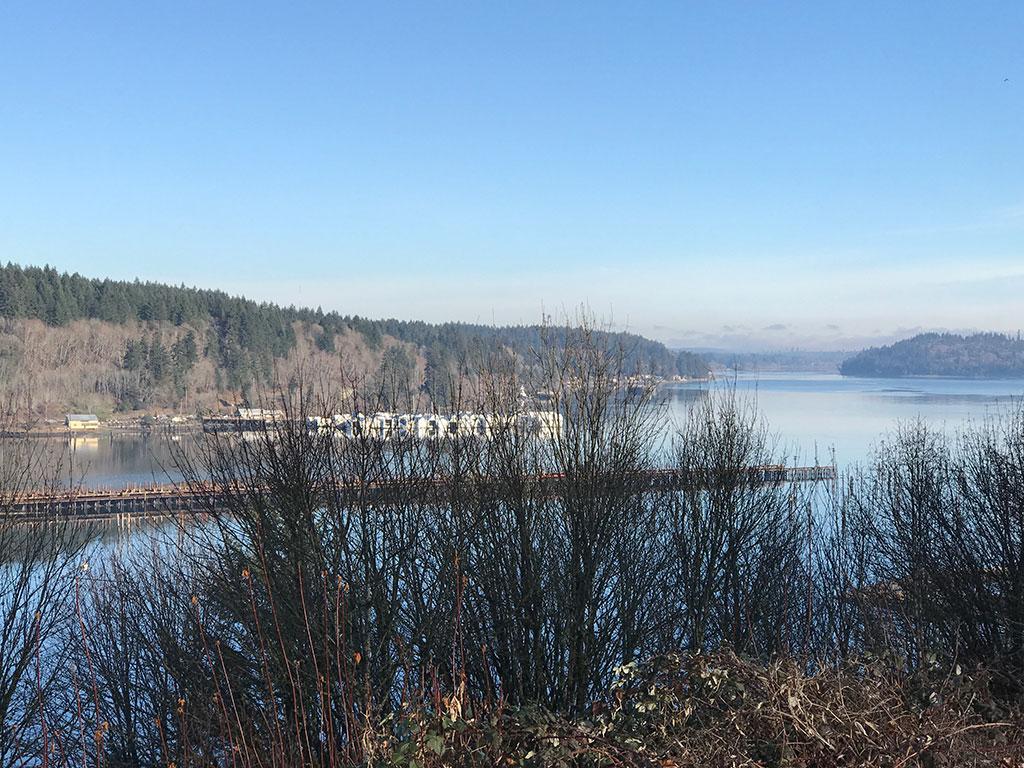 Shelton Scenic View